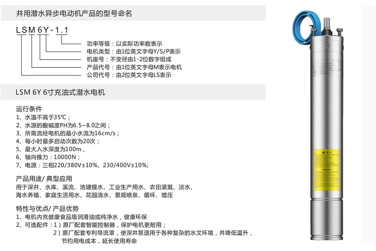 6寸充油式潜水电机(图1)